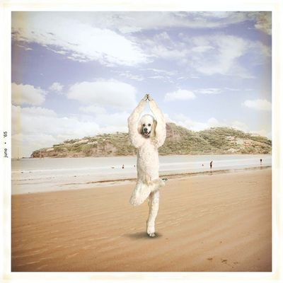 Yoga008_2